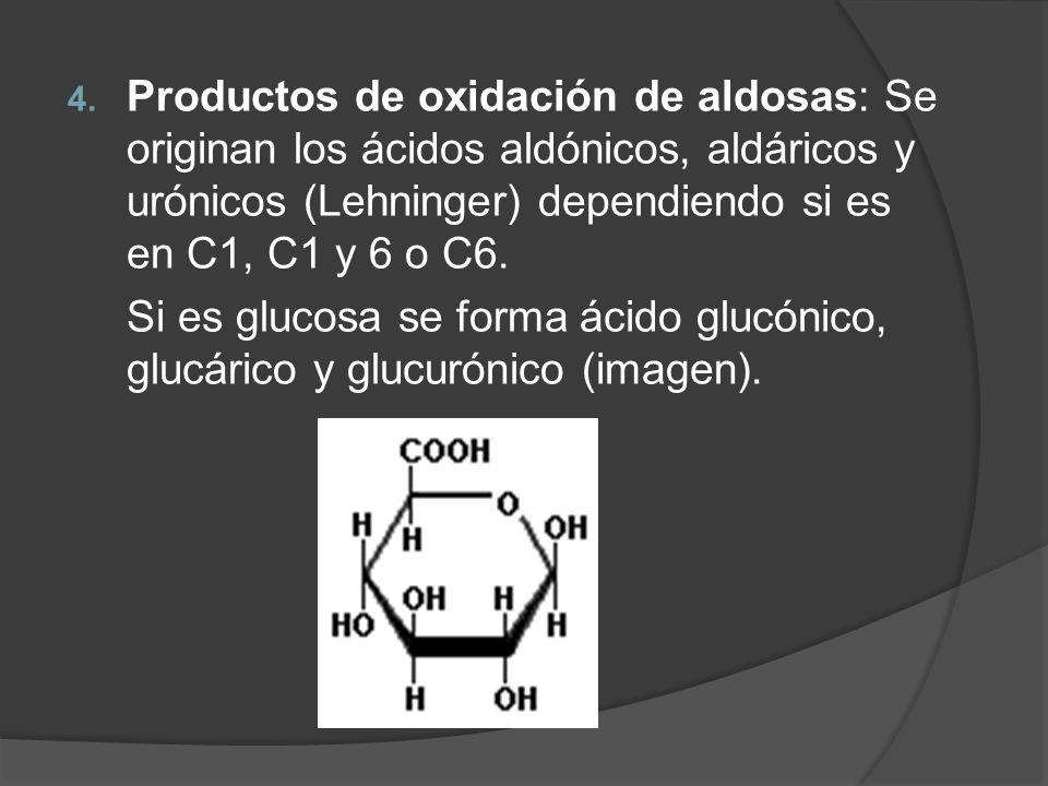 4. Productos de oxidación de aldosas: Se originan los ácidos aldónicos, aldáricos y urónicos (Lehninger) dependiendo si es en C1, C1 y 6 o C6. Si es g