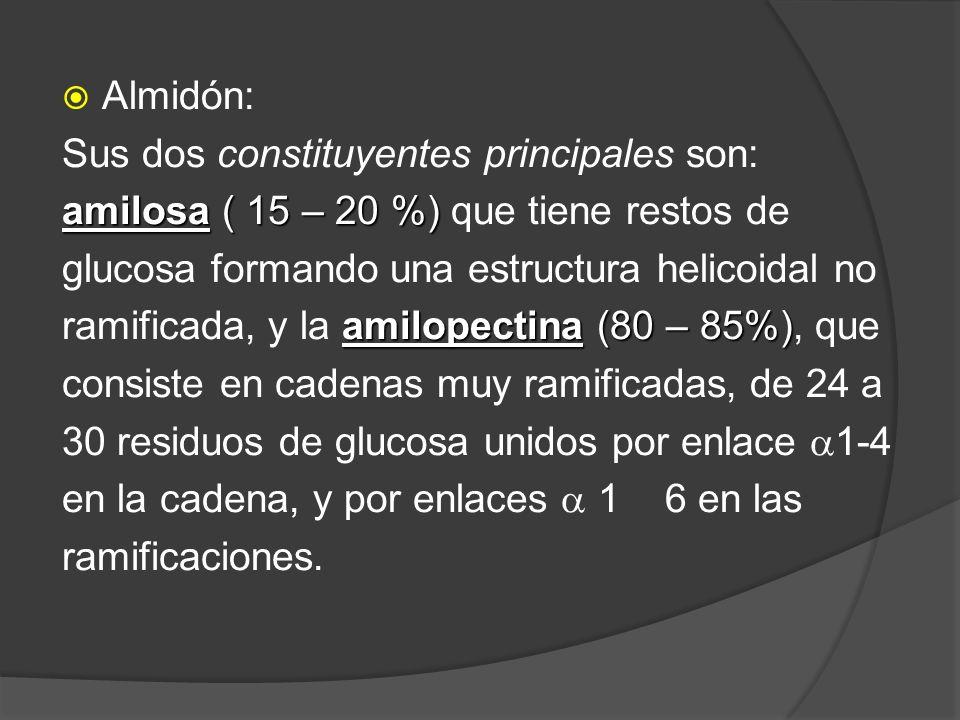 Almidón: Sus dos constituyentes principales son: amilosa ( 15 – 20 %) amilosa ( 15 – 20 %) que tiene restos de glucosa formando una estructura helicoi