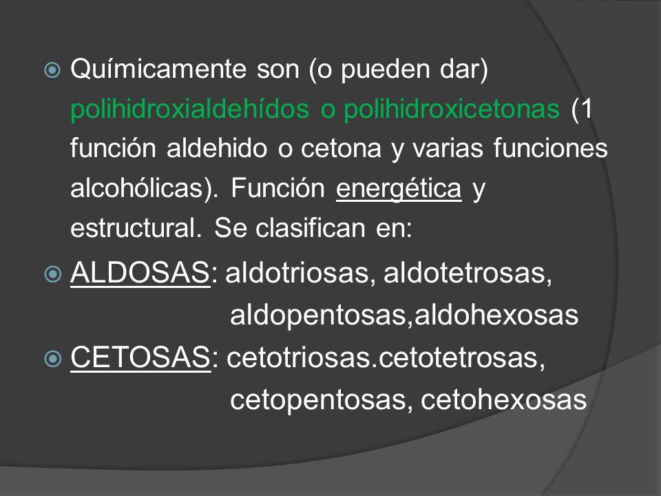 Químicamente son (o pueden dar) polihidroxialdehídos o polihidroxicetonas (1 función aldehido o cetona y varias funciones alcohólicas). Función energé