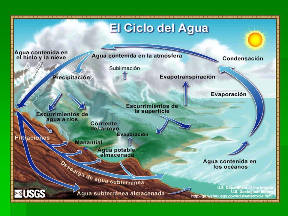 El balance hidrológico climático resulta de la diferencia entre el agua que llega a la superficie por precipitaciones y la que sale por evaporación directa del suelo y transpiración de las plantas.