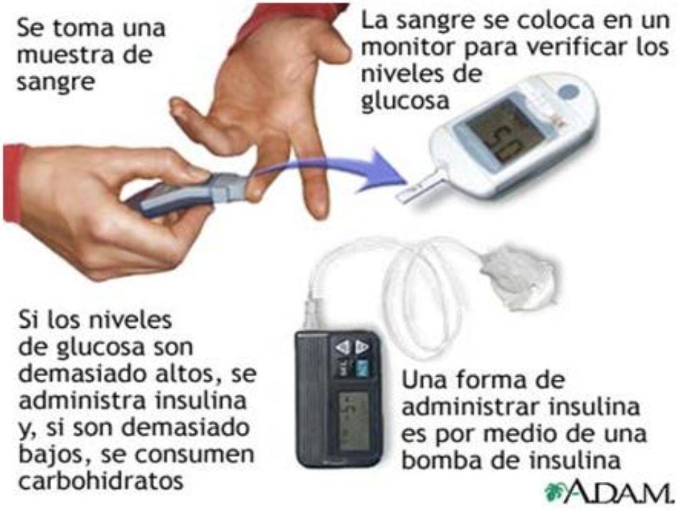 Acciones farmacológicas Estimulan la secreción de insulina Estimulan la secreción de insulina Disminuyen la HbA1c aprox.