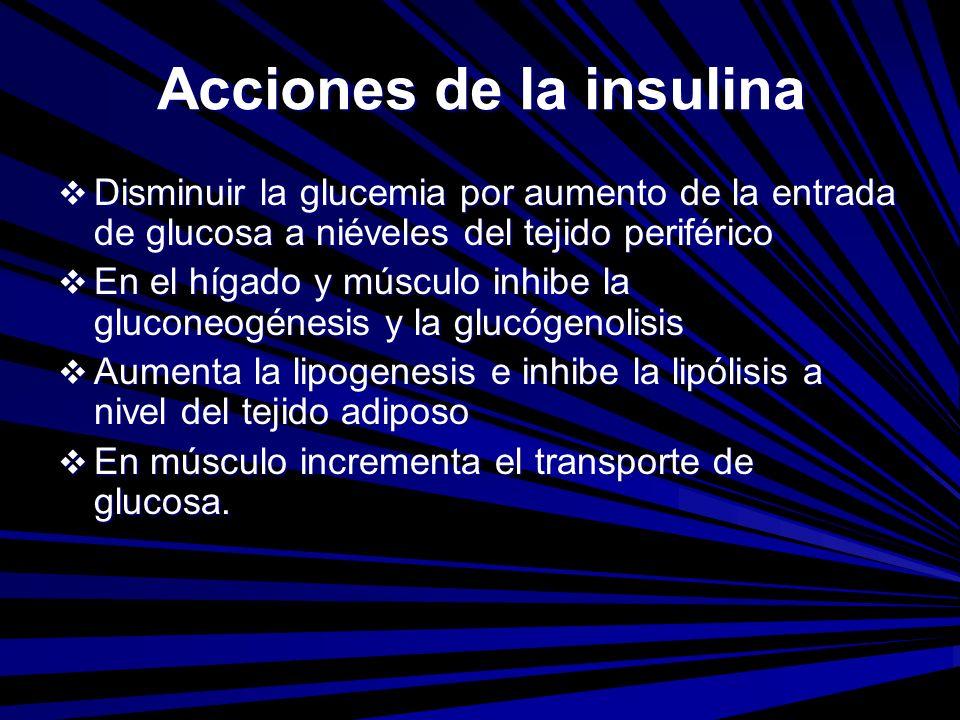 Acciones de la insulina Disminuir la glucemia por aumento de la entrada de glucosa a niéveles del tejido periférico Disminuir la glucemia por aumento