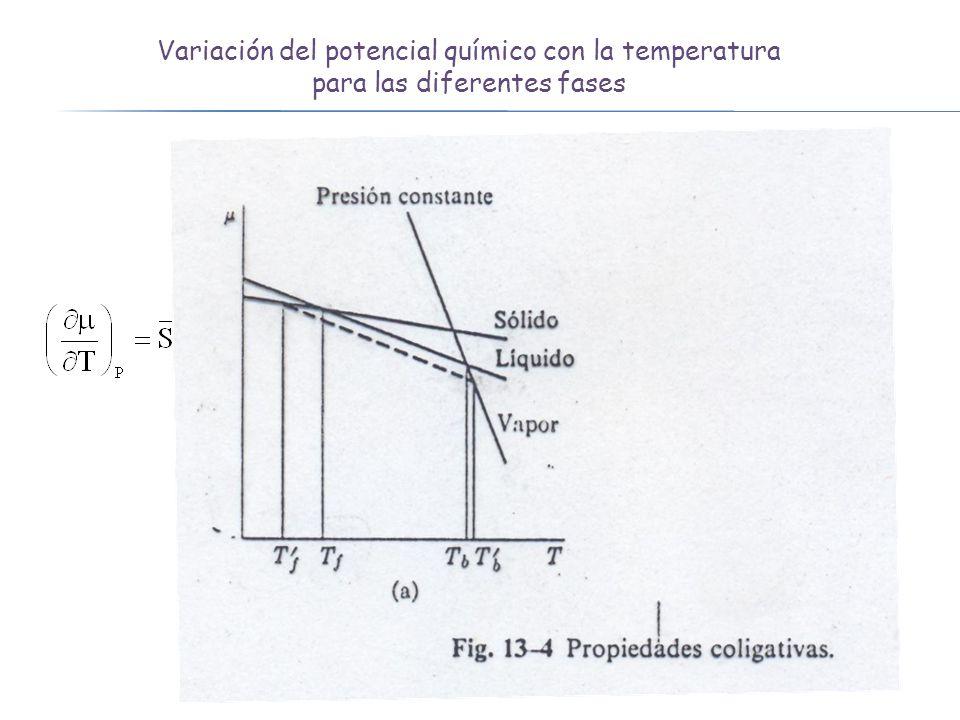 Variación del potencial químico con la temperatura para las diferentes fases