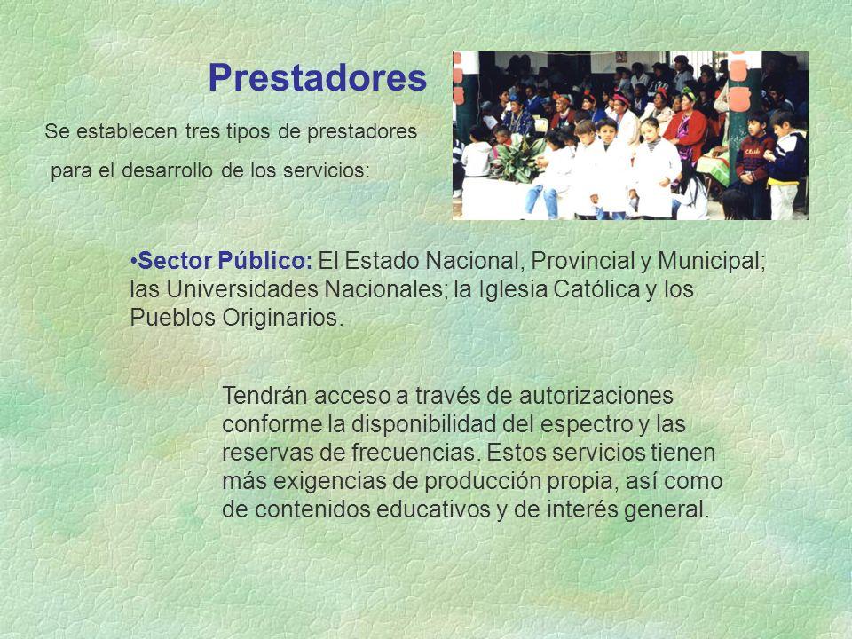 Prestadores Se establecen tres tipos de prestadores para el desarrollo de los servicios: Sector Público: El Estado Nacional, Provincial y Municipal; las Universidades Nacionales; la Iglesia Católica y los Pueblos Originarios.