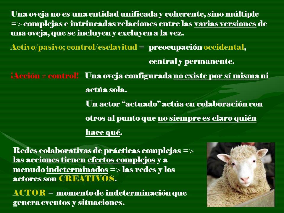 Una oveja no es una entidad unificada y coherente, sino múltiple = complejas e intrincadas relaciones entre las varias versiones de una oveja, que se