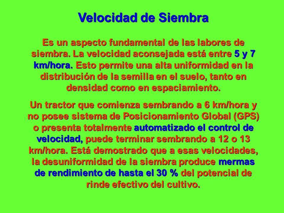 Velocidad de Siembra Es un aspecto fundamental de las labores de siembra. La velocidad aconsejada está entre 5 y 7 km/hora. Esto permite una alta unif