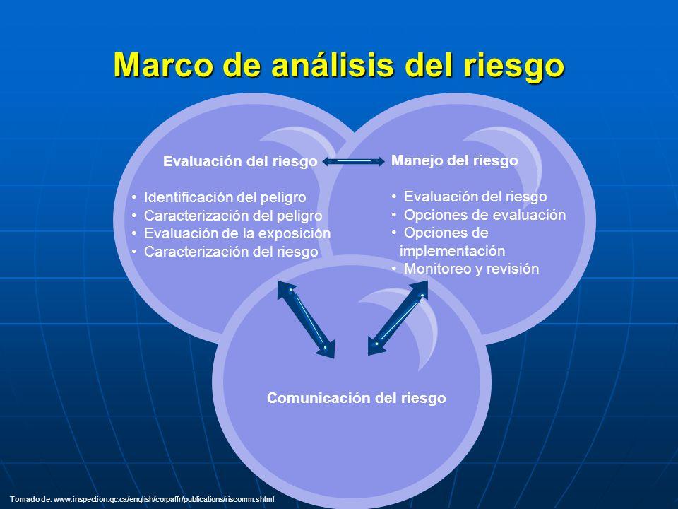 CONTEXTO/ PROBLEMA RIESGO OPCIONES DECISIONES ACCIONES EVALUACIÓN TOMADORES DE DECISIONES Fuente: Tinker, T.