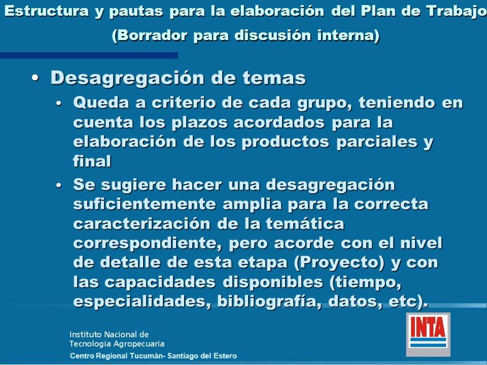 Centro Regional Tucumán- Santiago del Estero Estructura y pautas para la elaboración del Plan de Trabajo (Borrador para discusión interna) Desagregaci