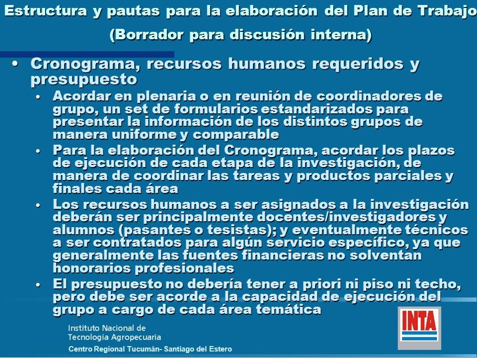 Centro Regional Tucumán- Santiago del Estero Estructura y pautas para la elaboración del Plan de Trabajo (Borrador para discusión interna) Cronograma,
