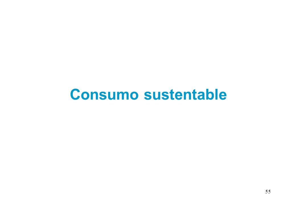 Consumo sustentable 55