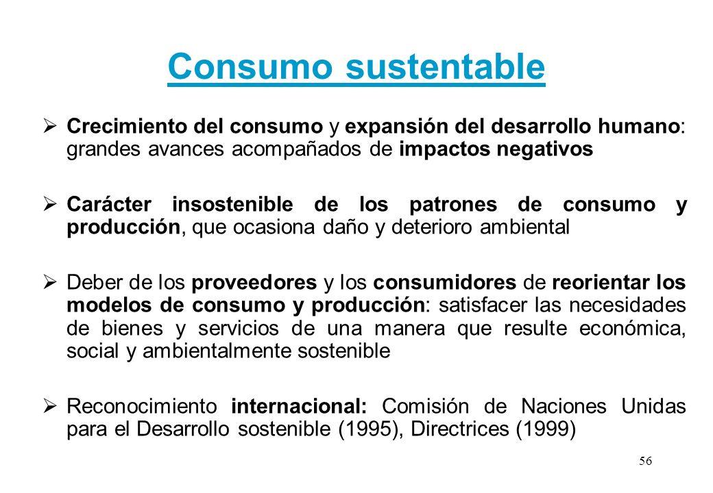 Consumo sustentable Crecimiento del consumo y expansión del desarrollo humano: grandes avances acompañados de impactos negativos Carácter insostenible