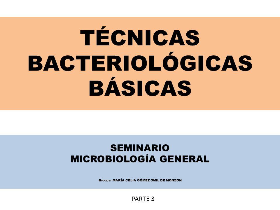 TÉCNICAS BACTERIOLÓGICAS BÁSICAS SEMINARIO MICROBIOLOGÍA GENERAL Bioqca. MARÍA CELIA GÓMEZ OMIL DE MONZÓN PARTE 3