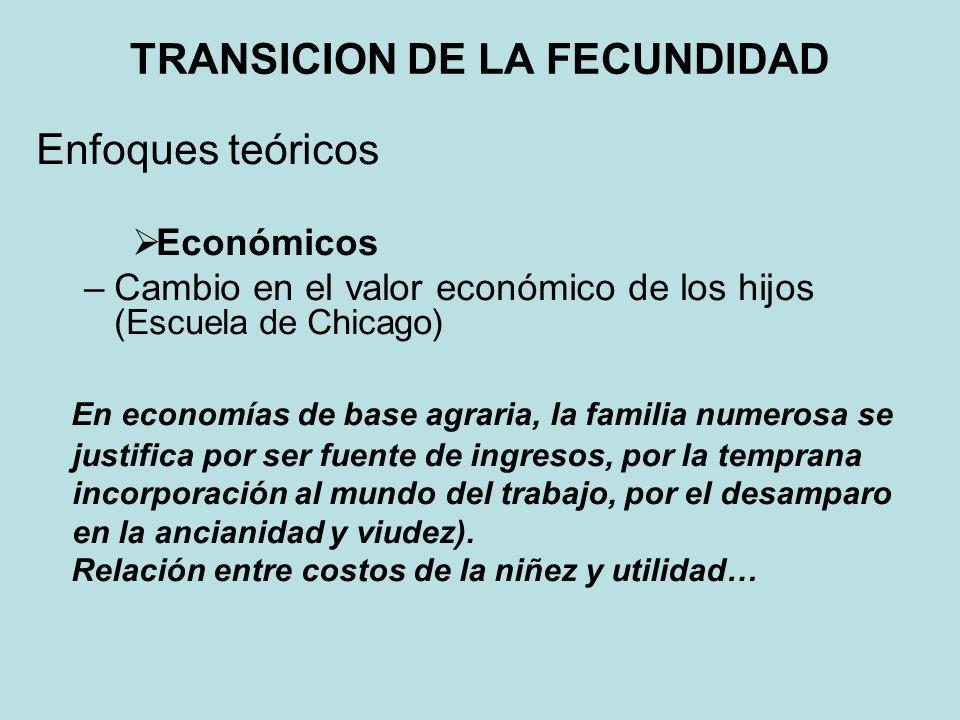 Económicos - Nueva economía familiar (Easterlin, 1968)) La difusión del bienestar y el nivel de vida absoluto y relativo inciden en el control de la fecundidad para mantener ese nivel.