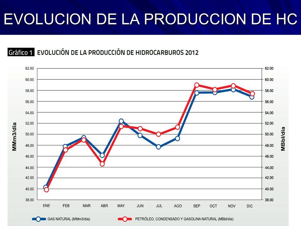 EVOLUCION DE LA PRODUCCION DE HC