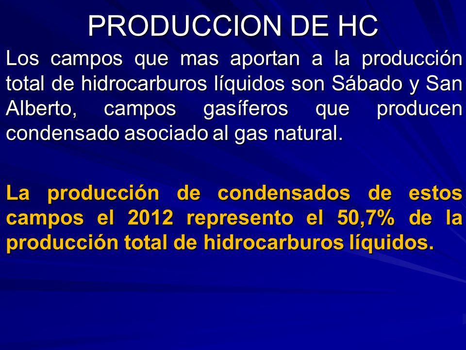 Los campos que mas aportan a la producción total de hidrocarburos líquidos son Sábado y San Alberto, campos gasíferos que producen condensado asociado