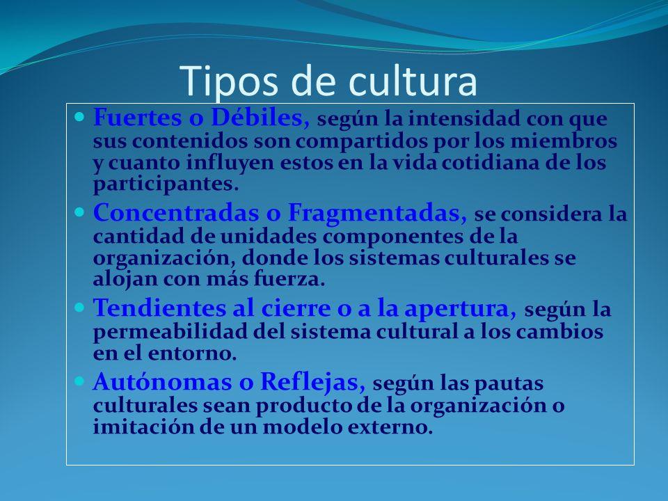 Función de la cultura Diferencia a cada organización Da identidad a sus miembros Compromiso global Da estabilidad organizacional Sirve como mecanismo