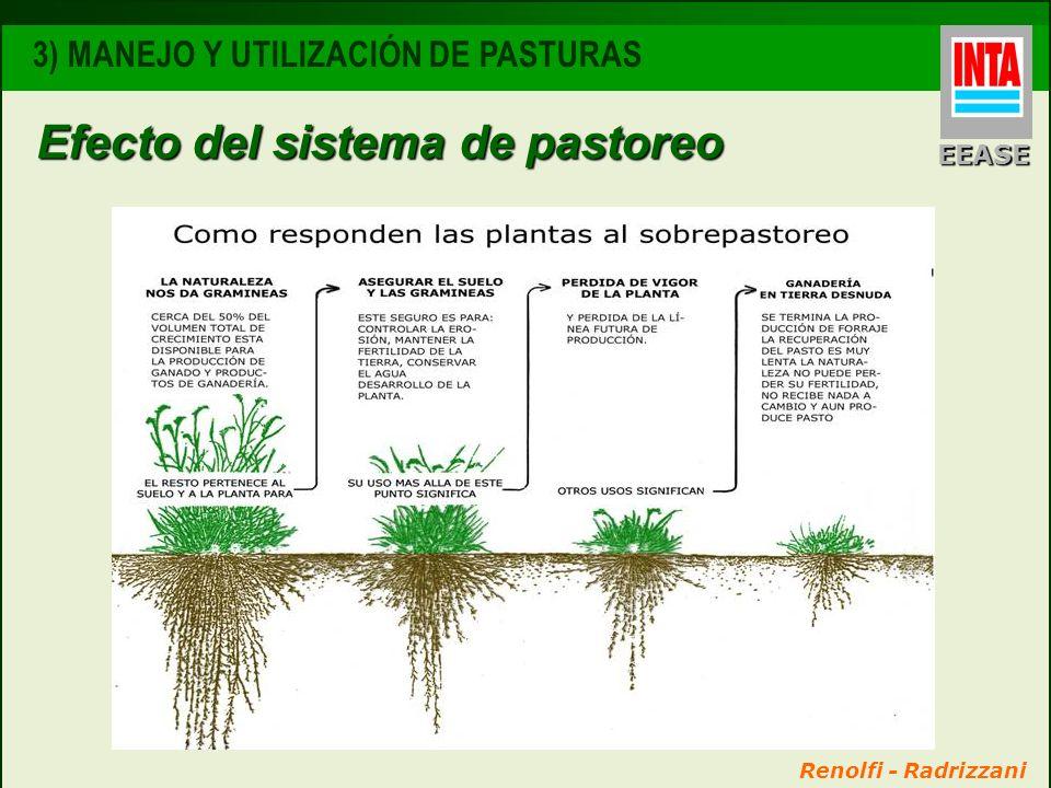 EEASE 3) MANEJO Y UTILIZACIÓN DE PASTURAS Efecto del sistema de pastoreo