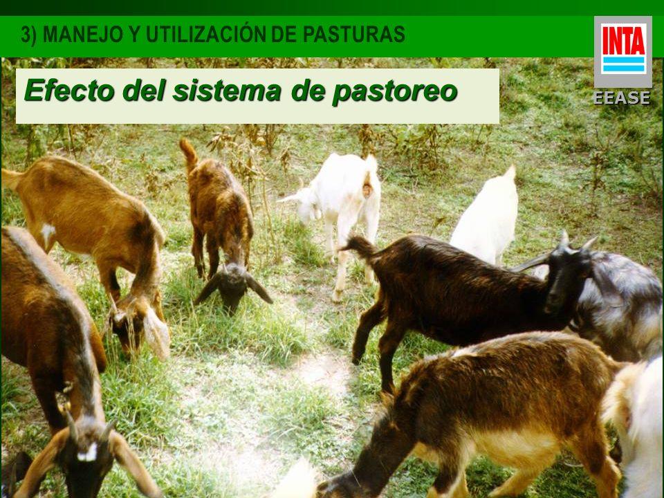 EEASE 3) MANEJO Y UTILIZACIÓN DE PASTURAS