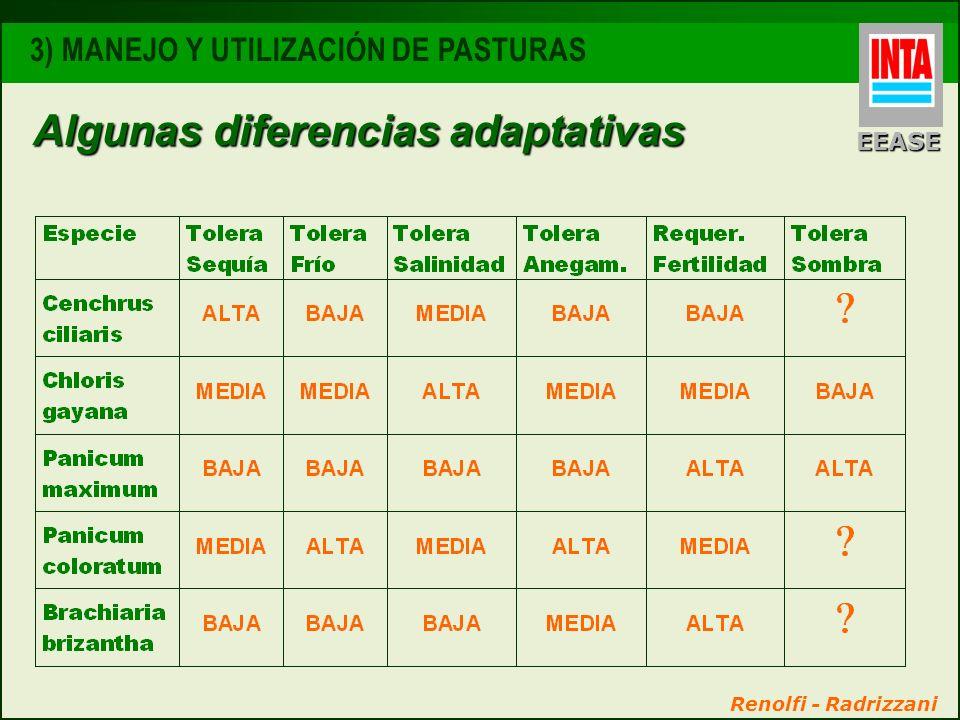Algunas diferencias adaptativas EEASE 3) MANEJO Y UTILIZACIÓN DE PASTURAS Renolfi - Radrizzani