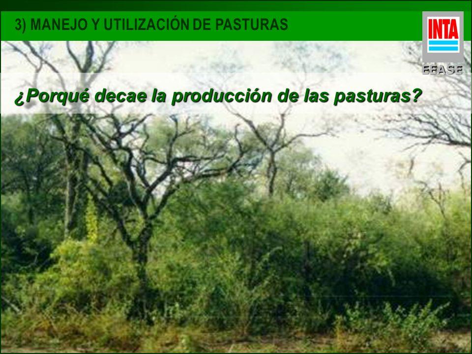EEASE ¿Porqué decae la producción de las pasturas?
