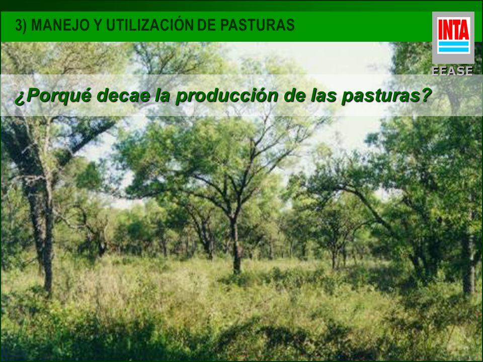 EEASE 3) MANEJO Y UTILIZACIÓN DE PASTURAS ¿Porqué decae la producción de las pasturas?