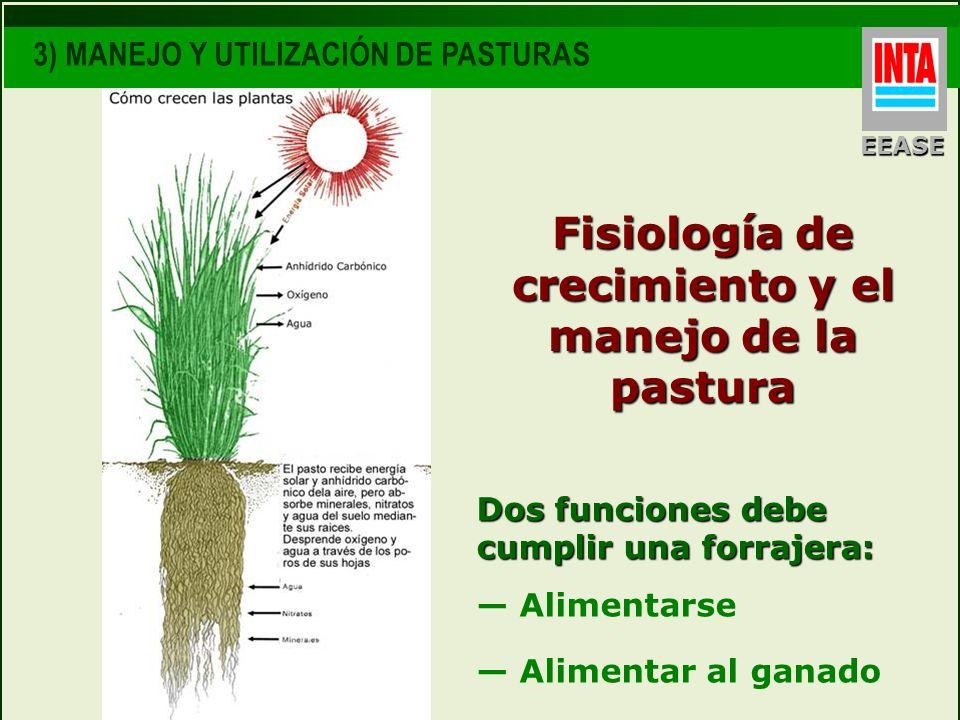 Dos funciones debe cumplir una forrajera: Alimentarse Alimentar al ganado Fisiología de crecimiento y el manejo de la pastura EEASE 3) MANEJO Y UTILIZ
