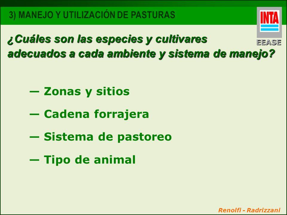 ¿Cuáles son las especies y cultivares adecuados a cada ambiente y sistema de manejo? Zonas y sitios Cadena forrajera Sistema de pastoreo Tipo de anima