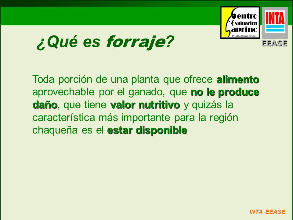 ¿Qué es forraje ? alimento no le produce dañovalor nutritivo estar disponible Toda porción de una planta que ofrece alimento aprovechable por el ganad