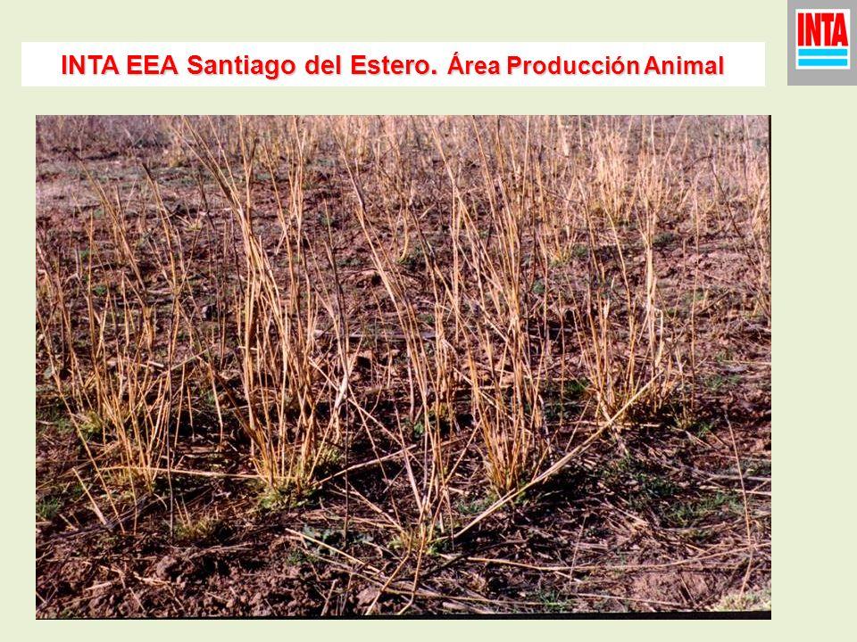 INTA EEA Santiago del Estero. Área Producción Animal