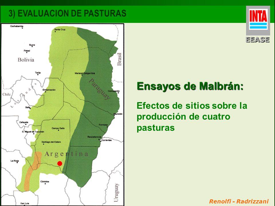 Renolfi - Radrizzani Ensayos de Malbrán: Efectos de sitios sobre la producción de cuatro pasturas 3) EVALUACION DE PASTURAS EEASE