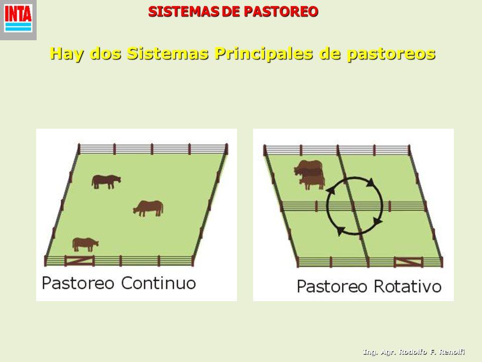 SISTEMAS DE PASTOREO Hay dos Sistemas Principales de pastoreos Ing. Agr. Rodolfo F. Renolfi