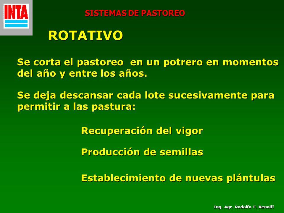 SISTEMAS DE PASTOREO ROTATIVO Se corta el pastoreo en un potrero en momentos del año y entre los años. Se deja descansar cada lote sucesivamente para