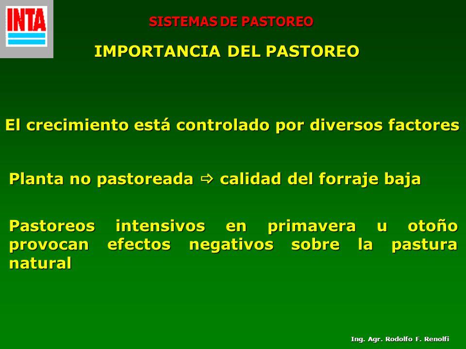 SISTEMAS DE PASTOREO IMPORTANCIA DEL PASTOREO El crecimiento está controlado por diversos factores Planta no pastoreada calidad del forraje baja Pasto