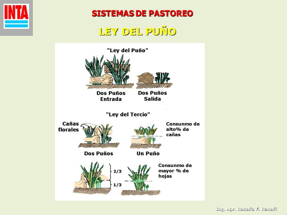 SISTEMAS DE PASTOREO LEY DEL PUÑO Ing. Agr. Rodolfo F. Renolfi