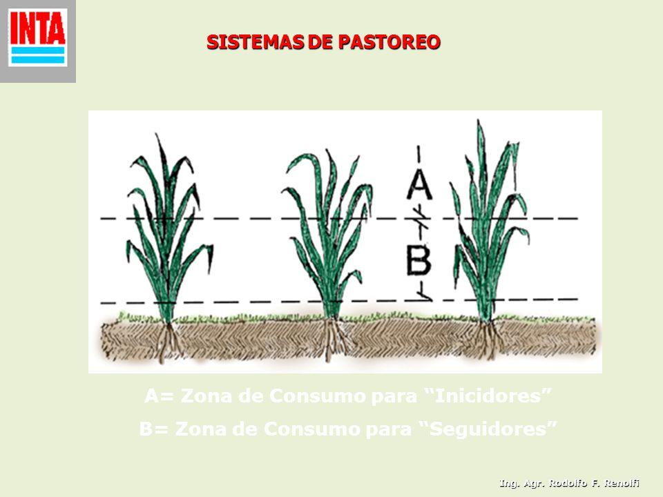 SISTEMAS DE PASTOREO A= Zona de Consumo para Inicidores B= Zona de Consumo para Seguidores Ing. Agr. Rodolfo F. Renolfi