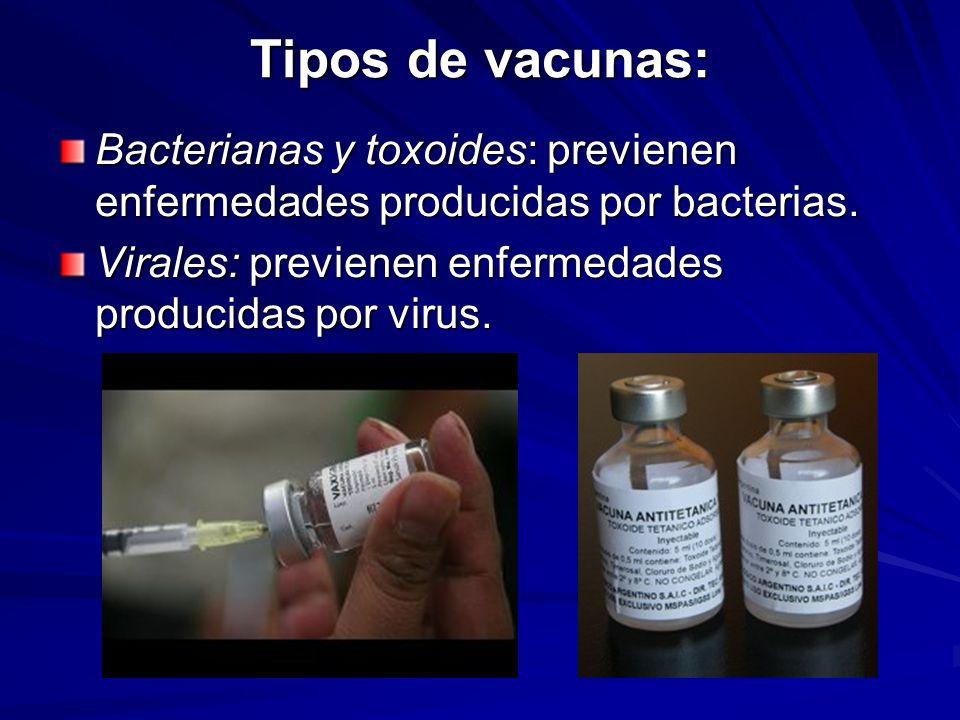 Tipos de vacunas: Bacterianas y toxoides: previenen enfermedades producidas por bacterias. Virales: previenen enfermedades producidas por virus.