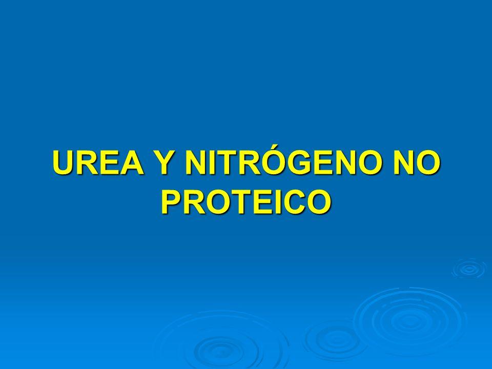 UREA Y NITRÓGENO NO PROTEICO