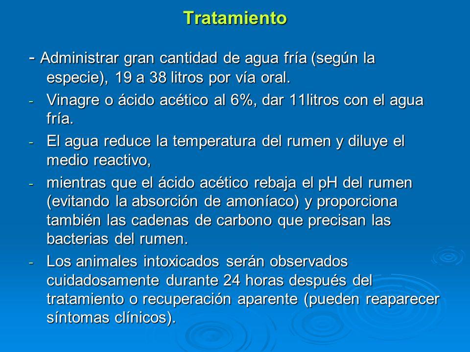Tratamiento - Administrar gran cantidad de agua fría (según la especie), 19 a 38 litros por vía oral. - Vinagre o ácido acético al 6%, dar 11litros co