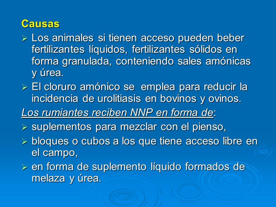 Causas Los animales si tienen acceso pueden beber fertilizantes líquidos, fertilizantes sólidos en forma granulada, conteniendo sales amónicas y úrea.