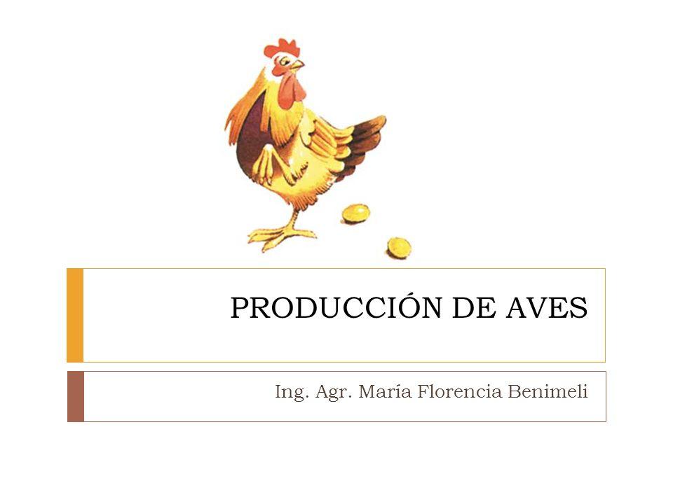 PRODUCCIÓN DE AVES Ing. Agr. María Florencia Benimeli