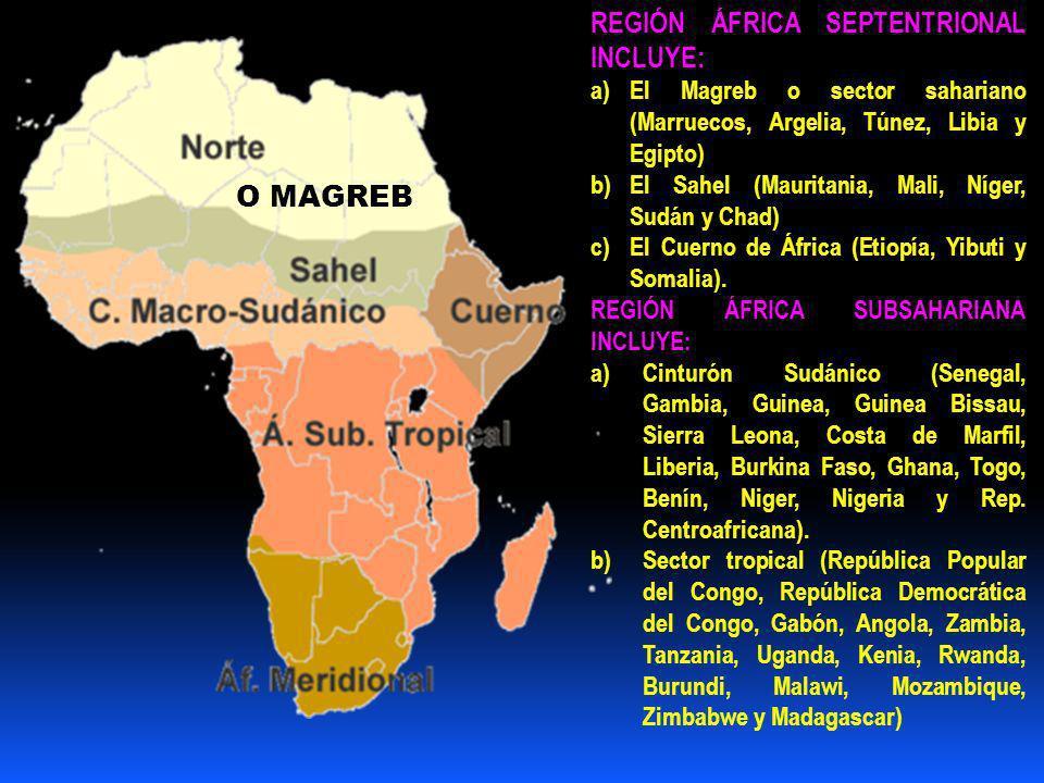 O MAGREB REGIÓN ÁFRICA SEPTENTRIONAL INCLUYE: a)El Magreb o sector sahariano (Marruecos, Argelia, Túnez, Libia y Egipto) b)El Sahel (Mauritania, Mali, Níger, Sudán y Chad) c)El Cuerno de África (Etiopía, Yibuti y Somalia).