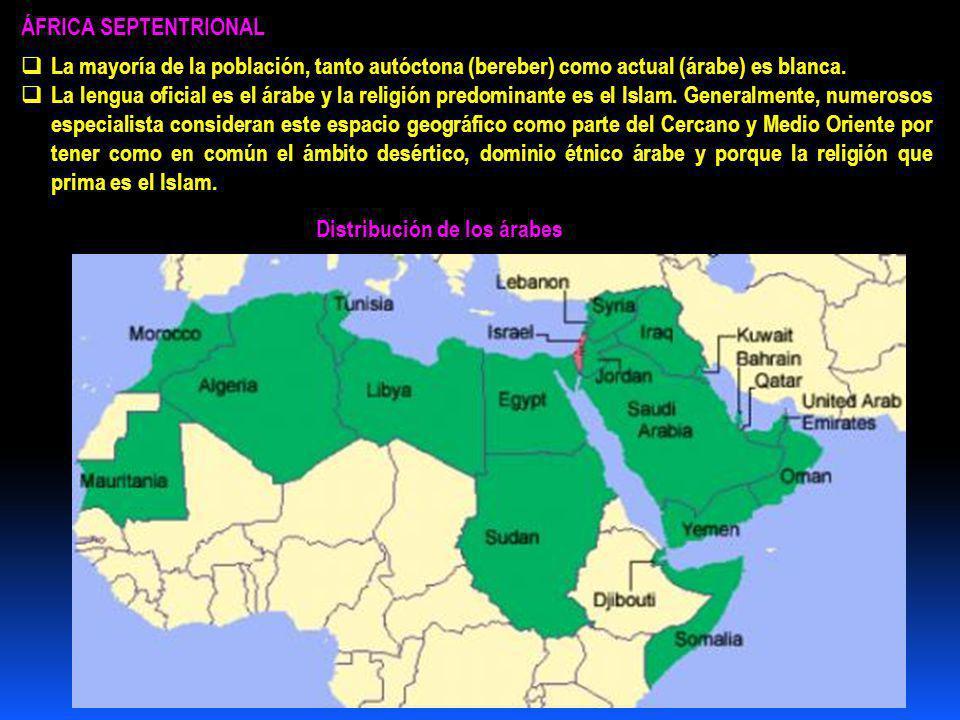 ÁFRICA SEPTENTRIONAL La mayoría de la población, tanto autóctona (bereber) como actual (árabe) es blanca.