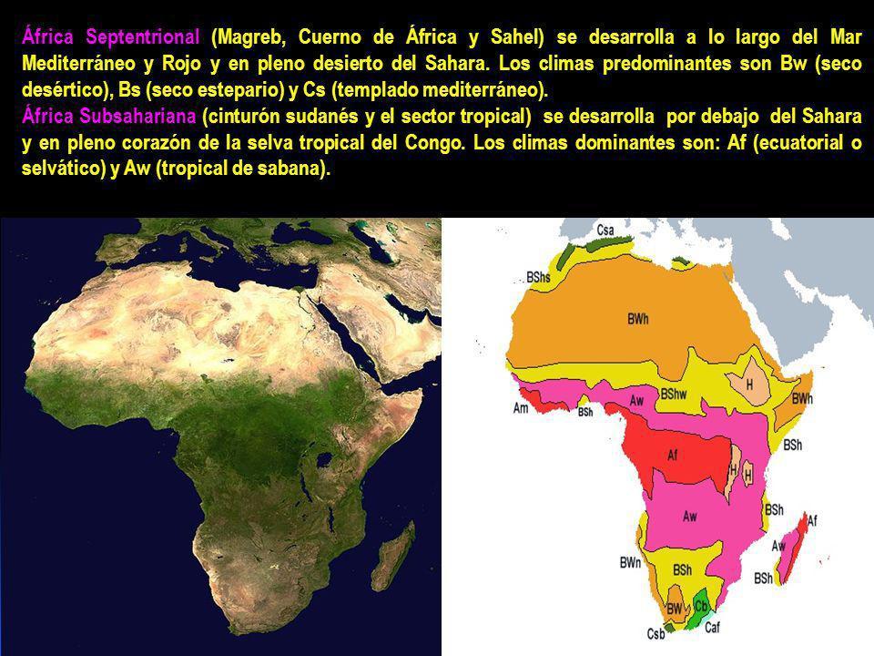 África Septentrional (Magreb, Cuerno de África y Sahel) se desarrolla a lo largo del Mar Mediterráneo y Rojo y en pleno desierto del Sahara.