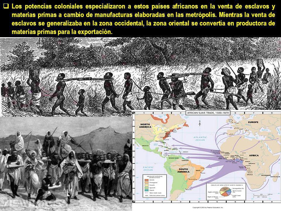 En el siglo XIX hasta mediados del XX África Subsahariana estuvo bajo el control colonial de Gran Bretaña, Francia, Bélgica, Alemania y Portugal.