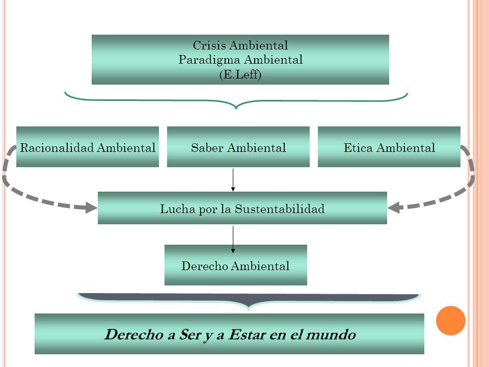 Crisis Ambiental Paradigma Ambiental (E.Leff) Racionalidad AmbientalSaber AmbientalEtica Ambiental Lucha por la Sustentabilidad Derecho Ambiental Dere