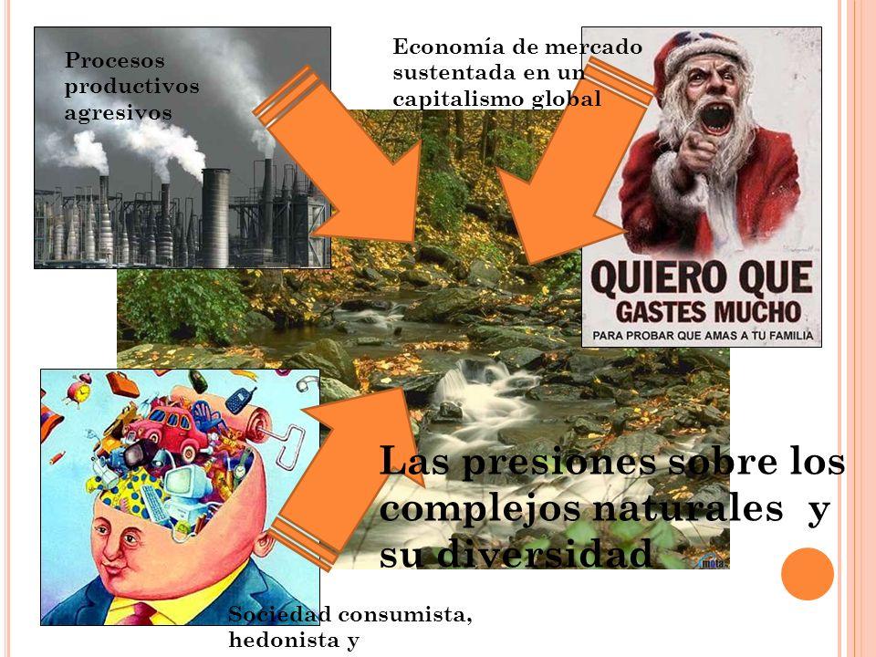 Las presiones sobre los complejos naturales y su diversidad Procesos productivos agresivos Economía de mercado sustentada en un capitalismo global Soc