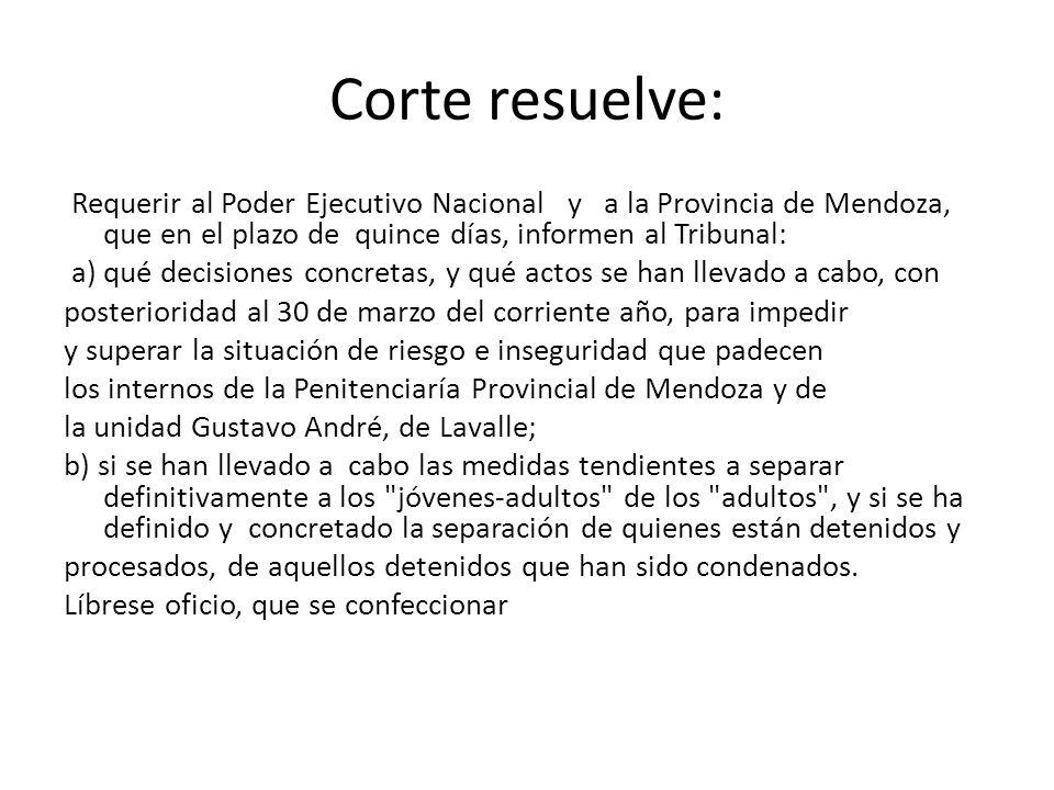 Corte resuelve: Requerir al Poder Ejecutivo Nacional y a la Provincia de Mendoza, que en el plazo de quince días, informen al Tribunal: a) qué decisio