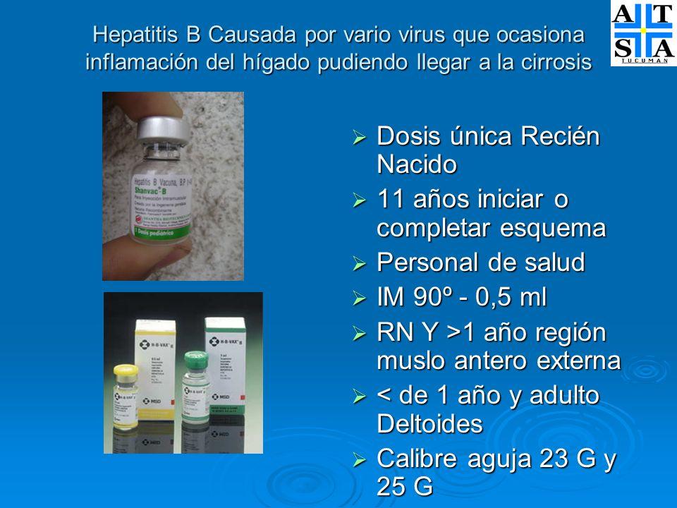 Hepatitis B Causada por vario virus que ocasiona inflamación del hígado pudiendo llegar a la cirrosis Dosis única Recién Nacido Dosis única Recién Nac