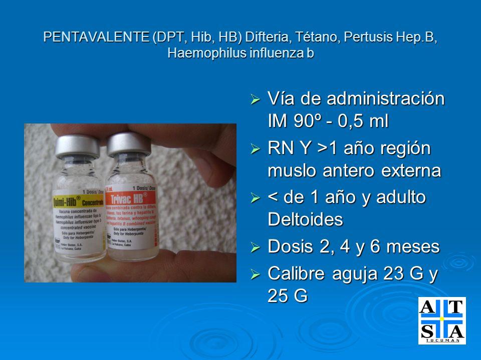 PENTAVALENTE (DPT, Hib, HB) Difteria, Tétano, Pertusis Hep.B, Haemophilus influenza b Vía de administración IM 90º - 0,5 ml Vía de administración IM 9