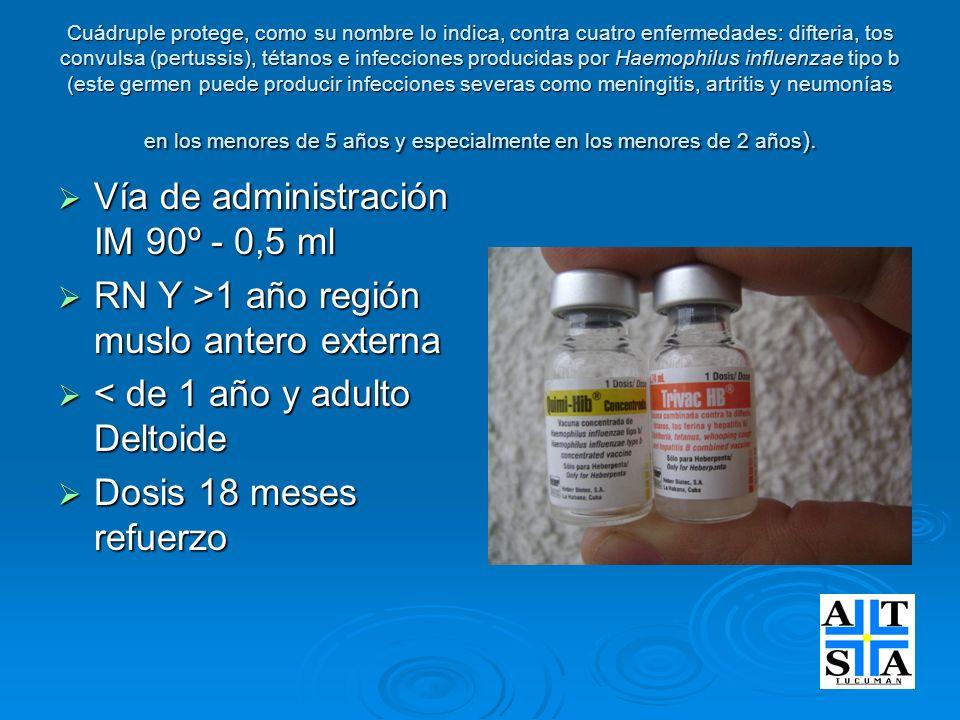Cuádruple protege, como su nombre lo indica, contra cuatro enfermedades: difteria, tos convulsa (pertussis), tétanos e infecciones producidas por Haem